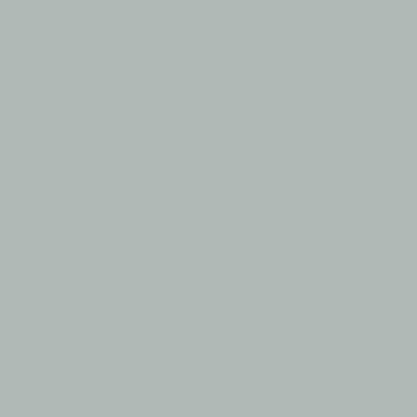 Okenná šedá